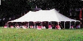 Rental store for 40 X 140 POLE TENT, WHITE-TT in Raleigh NC