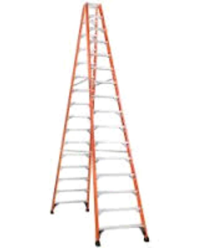 Where to find LADDER, 16  STEP, FIBERGLASS HD  375 in Raleigh