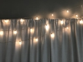 Rental store for STRING LIGHTS, SMALL 25  STRAND in Raleigh NC